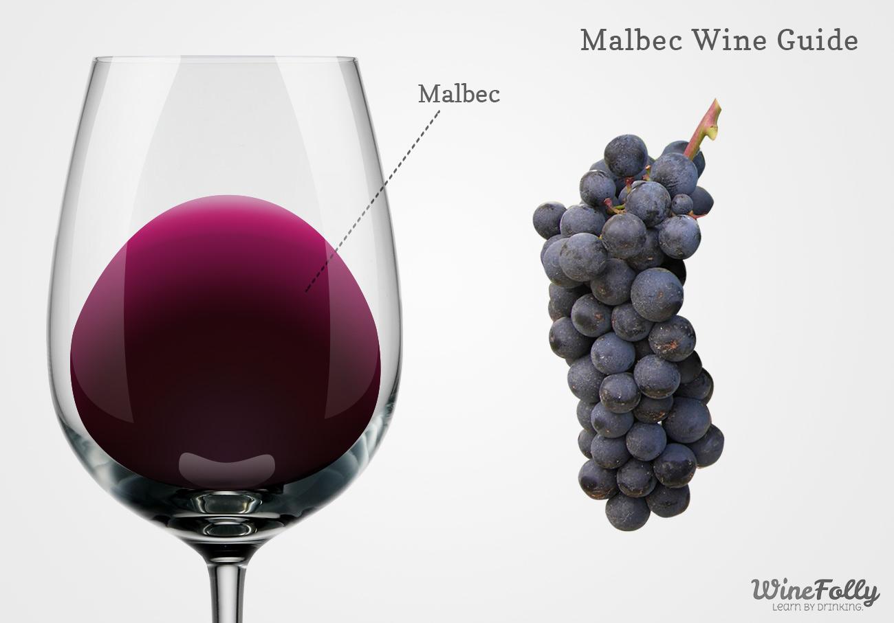 Curiosidades que Tal ves no sabias sobre el Malbec